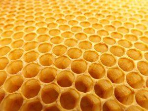 honeycomb-530987_640